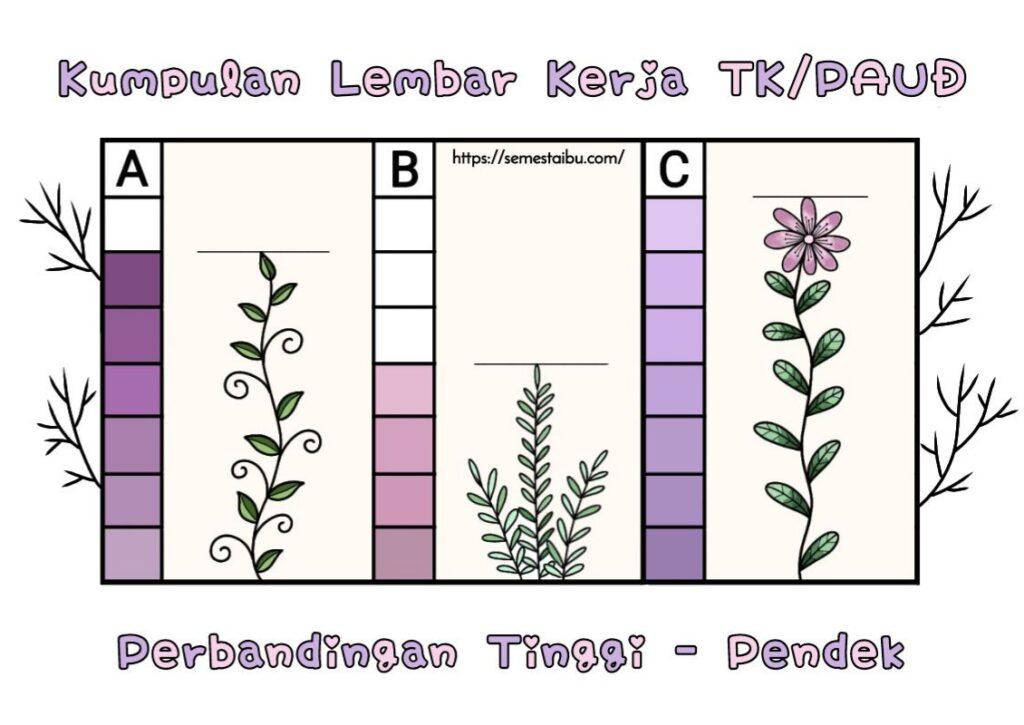 Lembar kerja anak tk - tema tanaman - lembar kerja paud - ukuran tinggi pendek - perbandingan - kindergarten worksheet - short tall