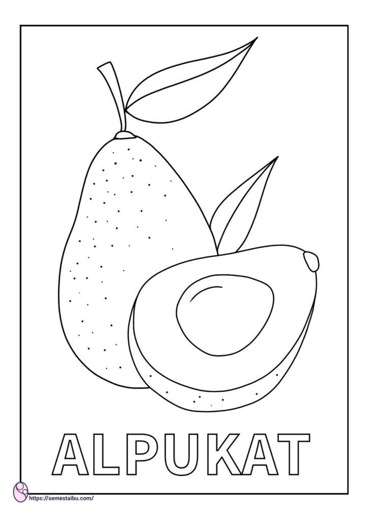 gambar mewarnai buah alpukat