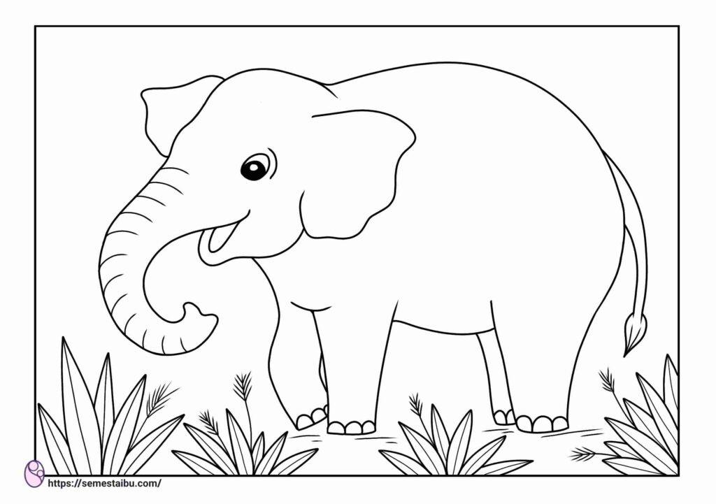 Gambar mewarnai hewan - gajah