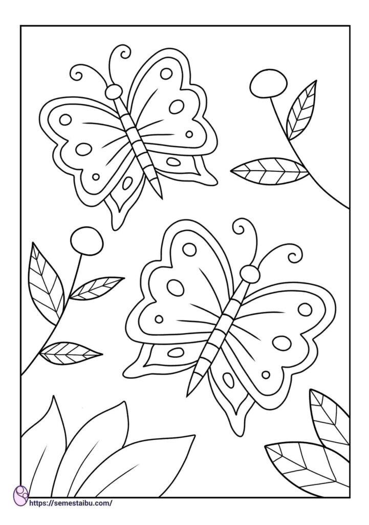 Gambar mewarnai hewan - kupu kupu