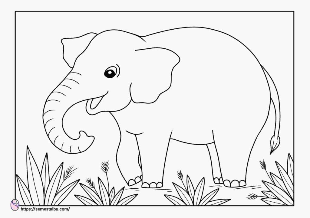 gambar mewarnai anak tk hewan gajah