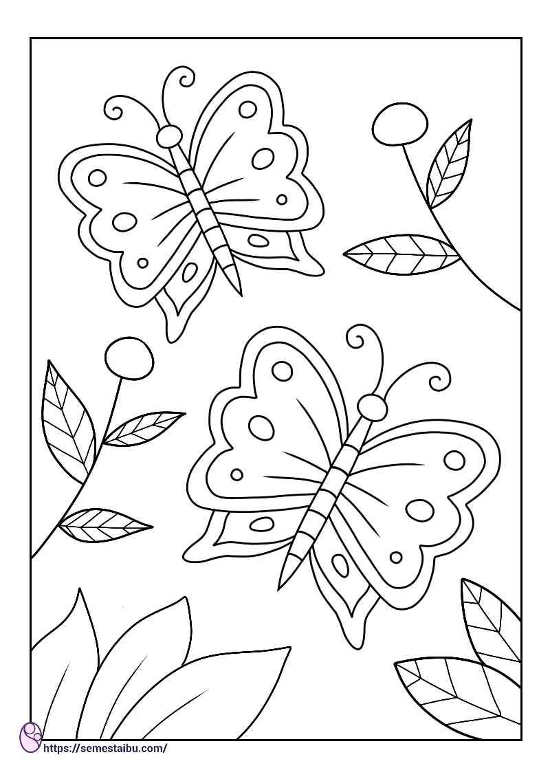gambar mewarnai hewan kupu kupu