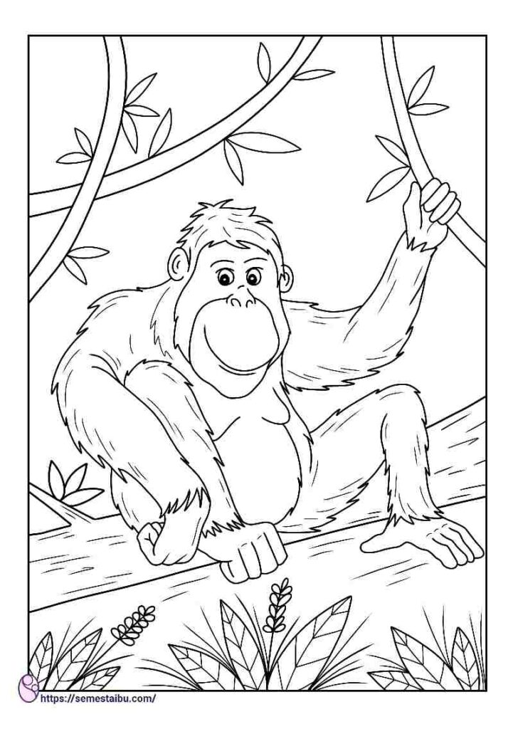 Kids coloring pages - animal - orangutan