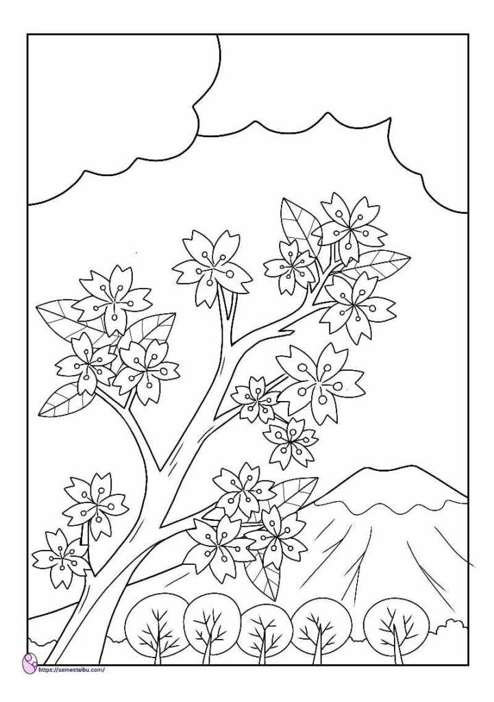 gambar mewarnai bunga sakura
