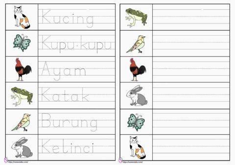 Lembar kerja anak tk menulis - tema binatang
