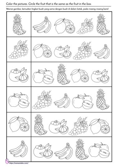 lembar kerja anak tk - tema buah