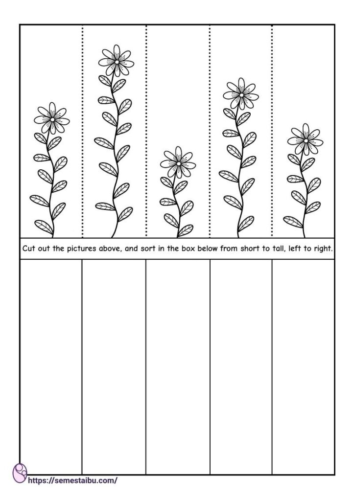 Cut and paste worksheets - short and tall
