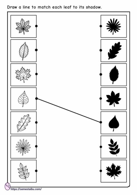 Preschool worksheets - matching pictures - shadow