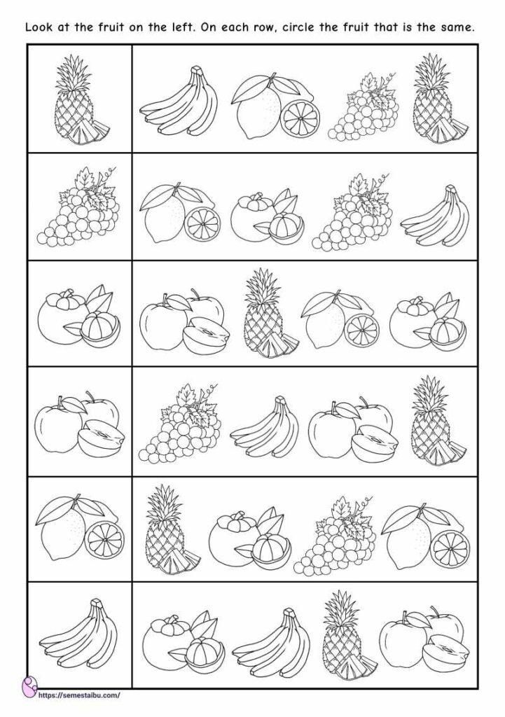 Same and different worksheets - fruits - visual discrimination