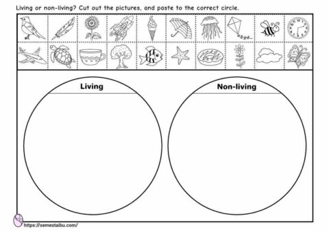 Living and non-living - cut and paste - sorting worksheets
