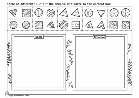 Same and different - cut and paste - sorting worksheets