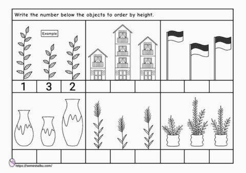 Short and tall - size comparison worksheets