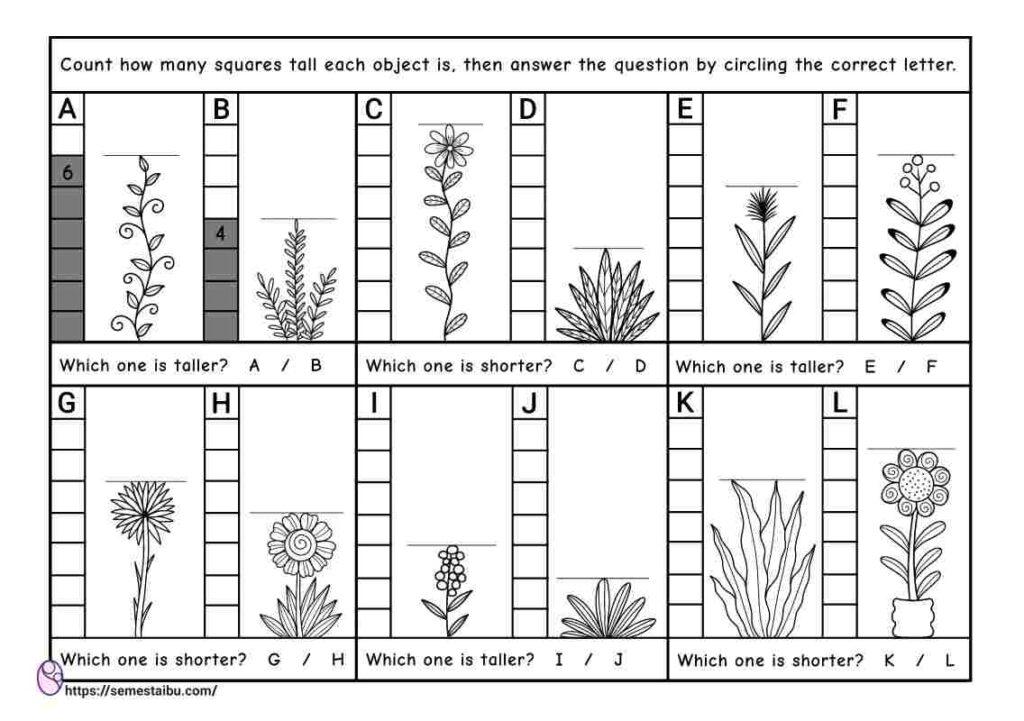 Short and tall worksheets - size measuring - kindergarten